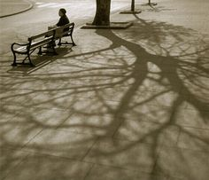 Fan Ho The Evening of Life Hong Kong, 1963 From The Living Theatre Fan Ho, Shanghai, Vintage Photography, Street Photography, Shadow Photography, Photography Women, Landscape Photography, San Jose, Hong Kong