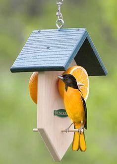30+ Creative Bird House Ideas For Beautiful Yard - TopDesignIdeas #birdhouseideas
