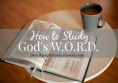 How to Study God's W.O.R.D. {Living in the Word, link-up}    www.DevotionalMotherhood.com