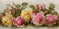 Paul de Longpre ~ pink and yellow roses