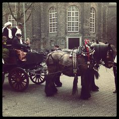 Celebrating Dutch Carnival in Venlo (Through Instagram Photos) | The Travel Tester | www.thetraveltester.com