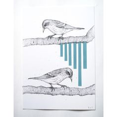SISKIN original bird drawing by kerrylemon