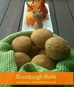 4 ingredient sourdough dinner rolls, egg-free, dairy-free, commercial yeast-free