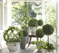 Vases, Glass Vases & Decorative Vases | Pottery Barn Topiary Garden, Garden Pots, Vegetable Garden, Container Plants, Container Gardening, Bonsai, Deco Nature, Stone Planters, White Planters