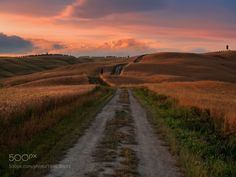 Road to the sunset by blazblue78 #Landscapes #Landscapephotography #Nature #Travel #photography #pictureoftheday #photooftheday #photooftheweek #trending #trendingnow #picoftheday #picoftheweek