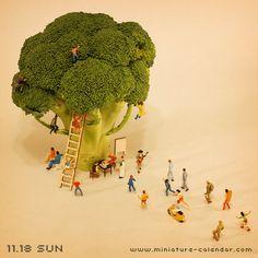 Tree climbing b