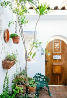 entry with plenty of plants//