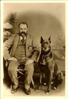 Man w smart GREAT DANE dog w cane in mouth GERMANY antique photo