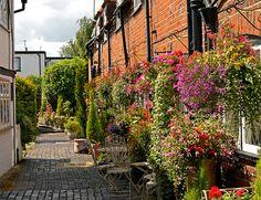 Colourful Courtyard Garden - Eton