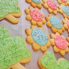 My go-to sugar cookie recipe that people seem to love! Not too sweet and so addictive when topped with homemade frosting!