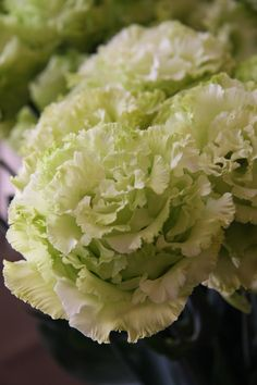 eustoma Corsage lime green