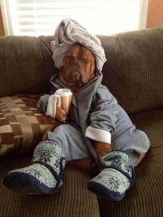 Hey look! It's me in the morning!