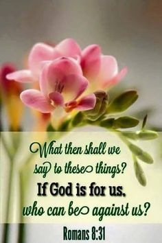 Romans shall we then say to these things? If God be for us, who can be against us? Biblical Quotes, Bible Verses Quotes, Bible Scriptures, Spiritual Quotes, Faith Quotes, Wisdom Bible, Spiritual Values, Bible 2, Romans 8 31