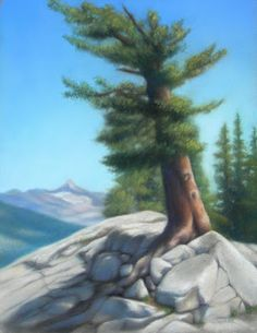 "The Marmot Palace 16"" X 20"" Pastel on Board Original Artwork by Travis Wheeler"