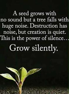 Beautiful Good Morning Quotes with Images That Will Enrich Your Day - Page 4 of 10 A seed grows with no sound but a tree falls with a huge noise. Destruction has noise, but creation is quiet. This is the power of silence… Grow silently. Morning Greetings Quotes, Good Morning Messages, Morning Prayers, Good Morning Good Night, Good Morning Wishes, Good Morning Images, Morning Pictures, Good Morning Inspirational Quotes, Good Morning Quotes