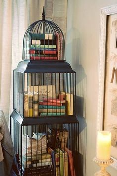 "Birdcage full of books - winner of the ""Best Use of a Birdcage"" award."