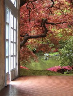 Beautiful Scenery from Living Room Wall Murals