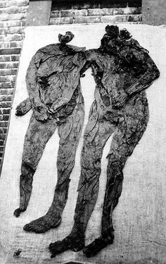 """The famous Weerdinge men after their discovery in 1904:  In a time long before modern forensic science, the local constabulary decided to transfer the soggy cadavers to the nearest morgue in a very peculiar fashion. They rolled up the bodies of the two men like human scrolls, wrung them out, and stuffed them into a box."""