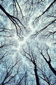 Winter *❄~*.Wishes & Dreams.*~❄* Winter by Mirai