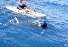 OMG on light tackle swordfish fishing