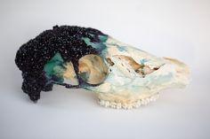 Bichos cristalizados que parecen joyería