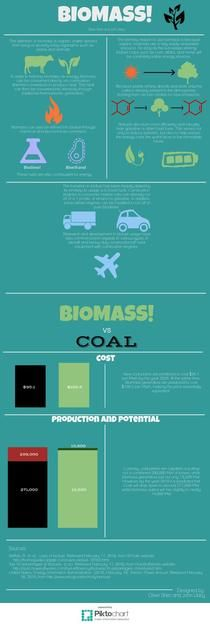 Biomass Basics | Piktochart Infographic Editor