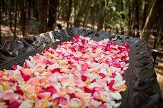 Galagos Forest Wedding, Pretoria, IZ-Photography Hindu Wedding Ceremony, Wedding Day, Pretoria, Forest Wedding, Mr Mrs, Wedding Photography, Lifestyle, Ideas, Pi Day Wedding