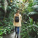 Stairway to heaven. Stairway To Heaven, Stairways, Bonsai, Orchids, Plants, Staircases, Bonsai Plants, Lily, Orchid