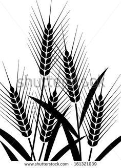 The illustration of wheat