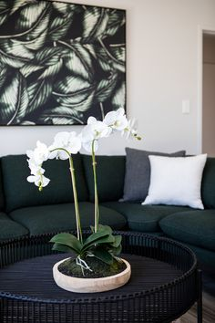 The colour green can create a cool, fresh and calm atmosphere. Greens are often paired with fresh whites and cool greys to mirror the refreshing balance of nature.  #colour #interiordesign #livingroom #familyroom #lounge #kaitunaplan #generationhomesnz Home Interior Design, Green Colors, Color Combinations, Family Room, Relax, Calm, Lounge, Design Inspiration, Colour
