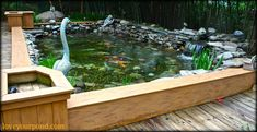 This could be a cool above ground koi pond aquatic eco for Fish pond installers