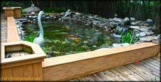 Semi-above ground koi pond installation by Full Service Aquatics of Summit, NJ.