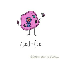 Cell-fie, by christine