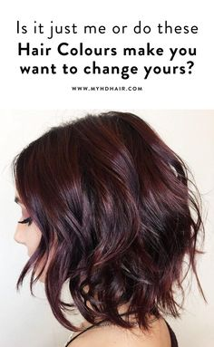 Is it just me or do these Hair Colours make you want to change yours? Violet Hair Colors, Red Violet Hair, Plum Hair, Gold Hair Colors, Red Brown Hair, Bright Red Hair, Burgundy Hair, Red Hair Color, Brown Hair Colors