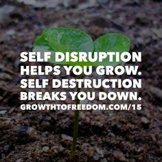 Self Disruption Helps You Grow.  Self Destruction Breaks You Down. http://GrowthToFreedom.com/15