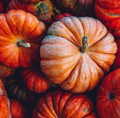 You can't get any more autumnal than a bright orange pumpkin