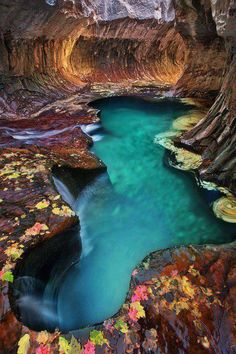 Emerald pool at Subway, Zion National Park, US.