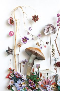 flower art In the Netherlands, artist Anne Ten Donkelaar creates floral art that melds both the real and the cutout in a narrative homage to blossoms she gathers from forest and garden Dried Flowers, Paper Flowers, Pressed Flower Art, Arte Floral, Flower Pictures, Flower Petals, Flower Crafts, Collage Art, Flower Power
