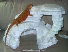 19 The Amazing Dragon Gecko - meowlogy Bearded Dragon Habitat, Bearded Dragon Cage, Paludarium, Vivarium, Bartagamen Terrarium, Lizard Terrarium, Terrarium Centerpiece, Bearded Dragon Enclosure, Reptile Decor