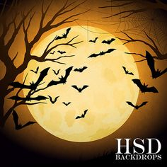 Halloween Photography Backdrop, Photo Booth Backdrop, Vinyl Backdrops – HSD Photography Backdrops & Floor Drop Photo Backgrounds
