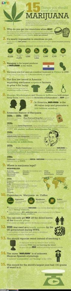 Marijuana Facts by Maiden11976