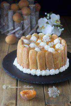 Torta charlotte con crema di albicocca