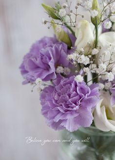 Lilac carnations..my Nanna loves carnations