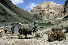 Afghanistan, donkeys being reloaded after swimming across the river as the bridge was destroyed