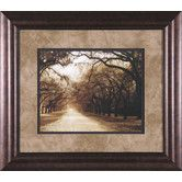 Found it at Wayfair - Savannah Oaks I by Alan Hausenflock Framed Photographic Print