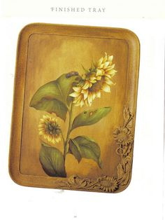 Flowers you can Paint – terebauer – Webová alba Picasa