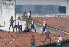 Blog do jornal Folha do Sul MG: CORPOS FORAM JOGADOS EM FOSSA EM NATAL