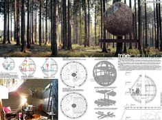 treehousing competition past winners - Google Search