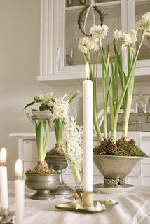 simply white Christmas plant white bulbs in silver urns