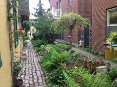 Montreal's Ruelle Verte, Green Allies